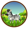 zebra with forest background vector image vector image