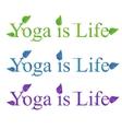 Yoga text - yoga is life vector image