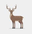 deer in flat style vector image