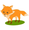 Fox TOn The White Background vector image