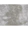 natural stone texture imitation stone vector image
