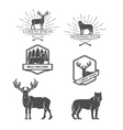 Deer and wolf Posters labels emblem vector image