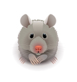 Hamster isolated on white vector image