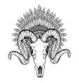 Hand Drawn Goat Skull in zentangle Feathered War vector image