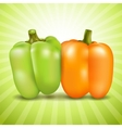 Orange and green sweet pepper vector image