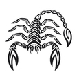 Tattoo zodiac scorpion - Astrology sign vector image vector image