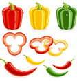 Bell peppers and Chili vector image vector image