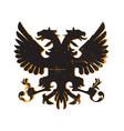 heraldry shield design vector image