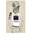 cute fashion hipster dog vector image