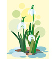 Snowdrops on a abstract background Spring of vector image