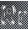 Bubbles letters R vector image