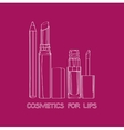 Cosmetics for Lips vector image