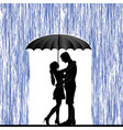 Kissing couple Man and woman in love vector image