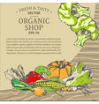 organic shop advertisement with fresh vegetables vector image