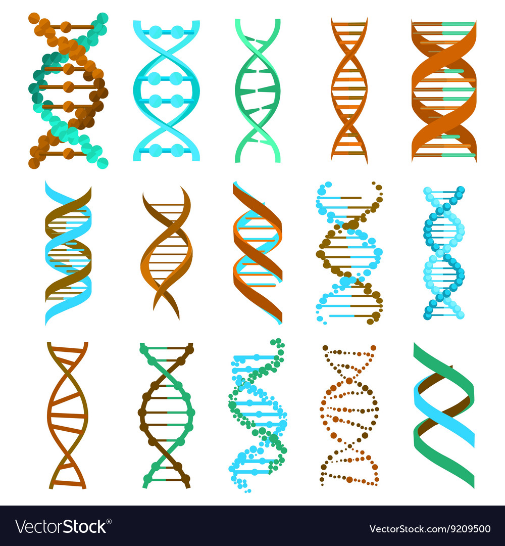 Dna molecule sign set genetic elements and icons vector