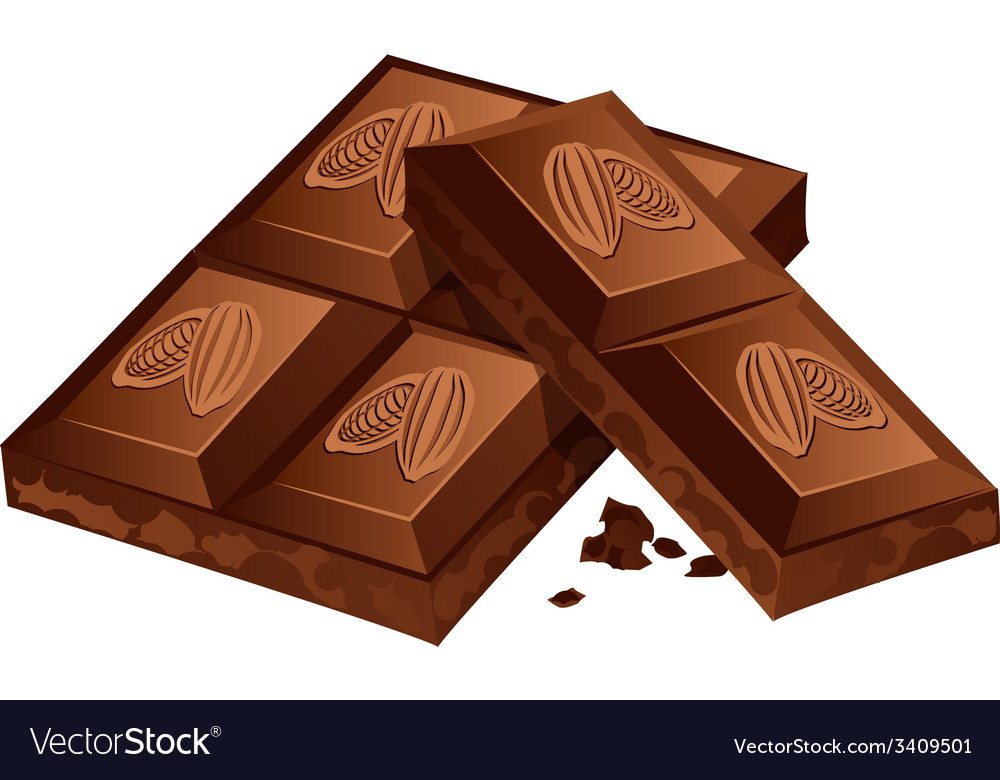 Pieces of chocolate isolated on white vector