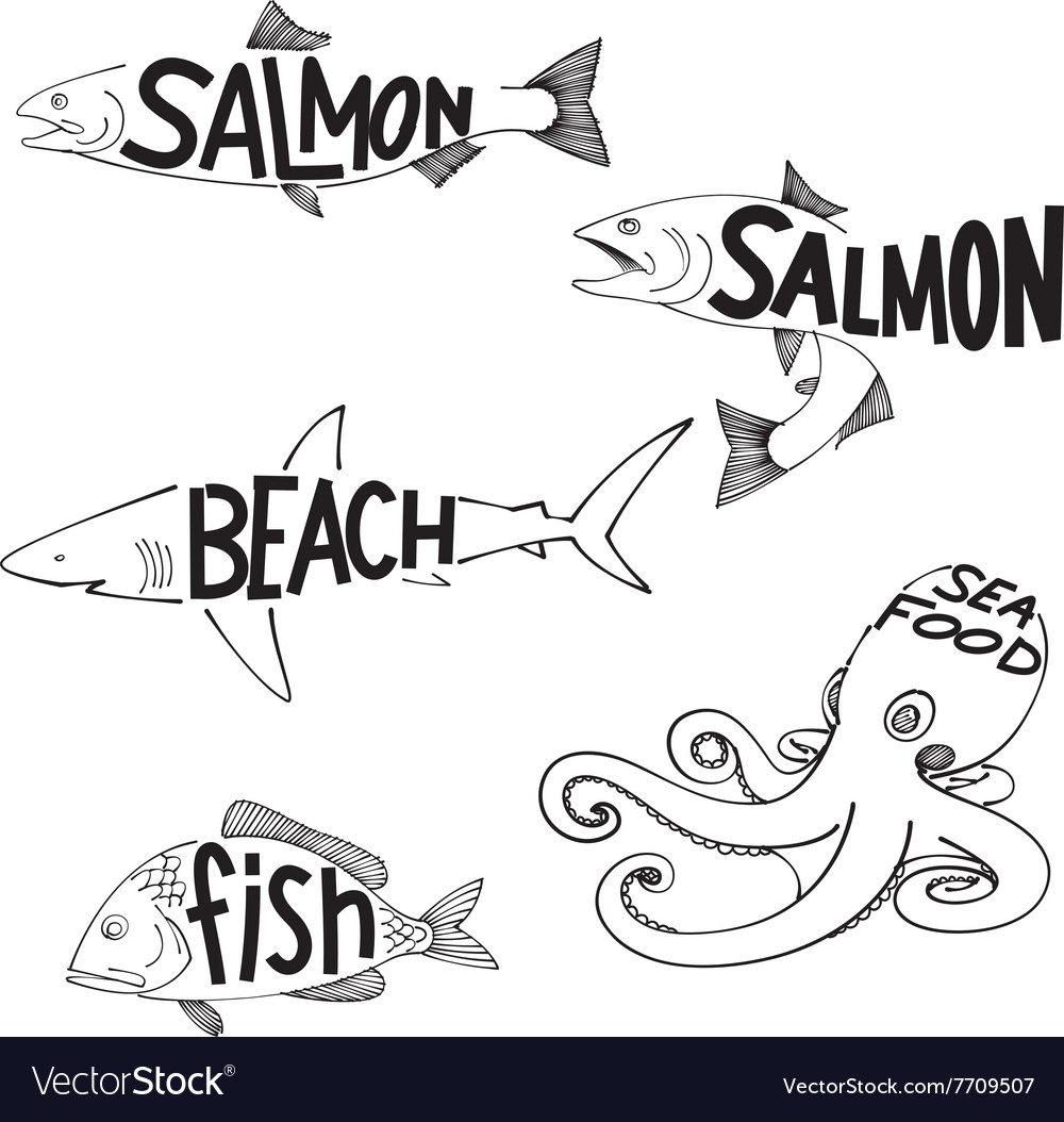 Drawing fish vector