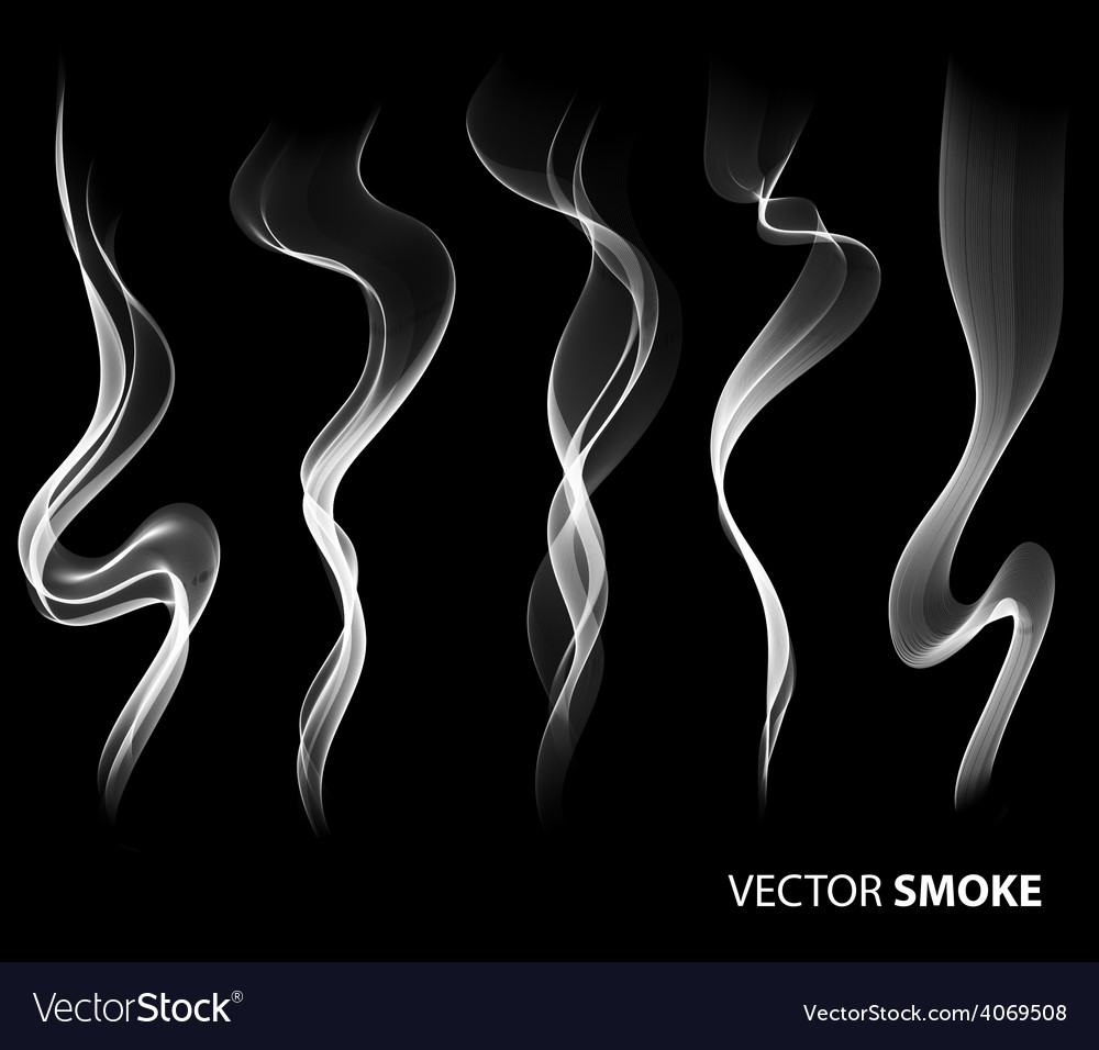 Set of realistic smoke on black background vector
