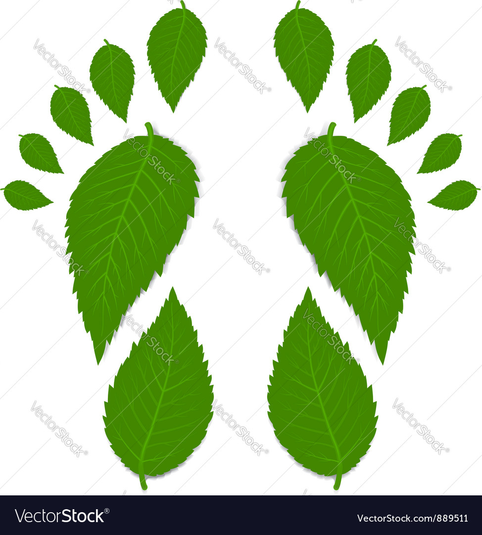 Green footprint vector