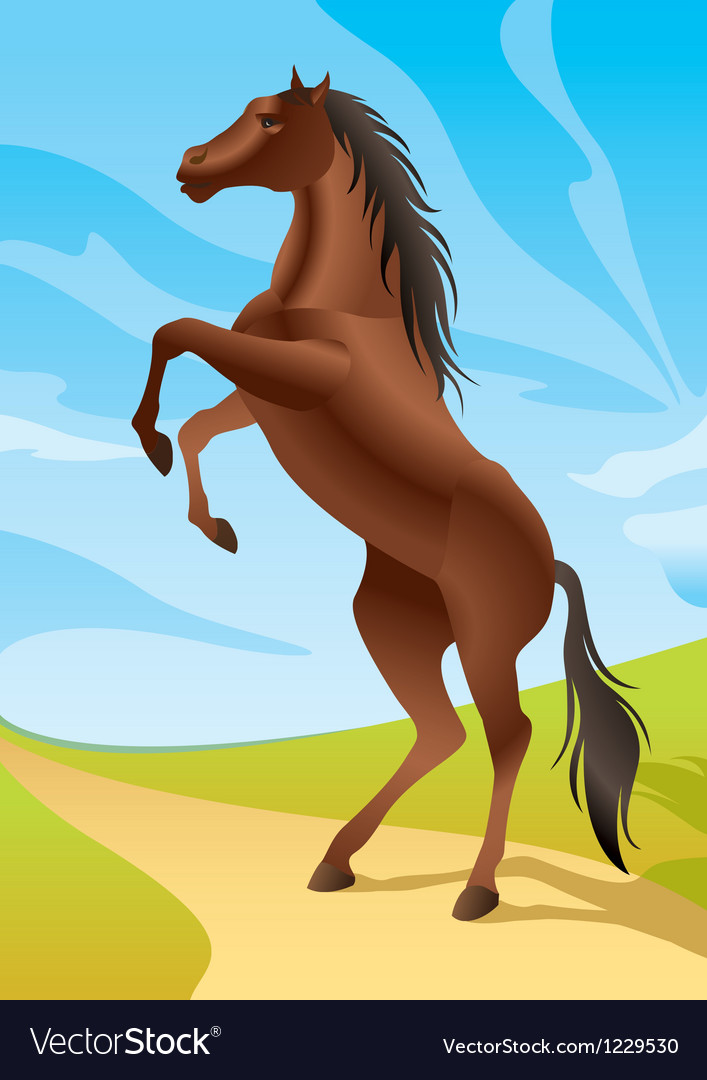 Wild horse in the fields vector