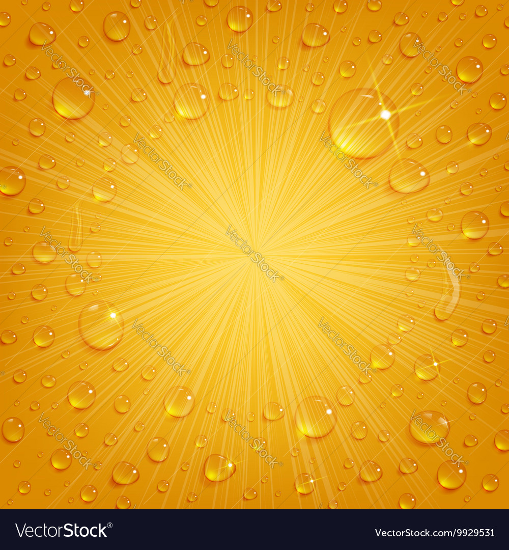 Condensate drops on beer background vector