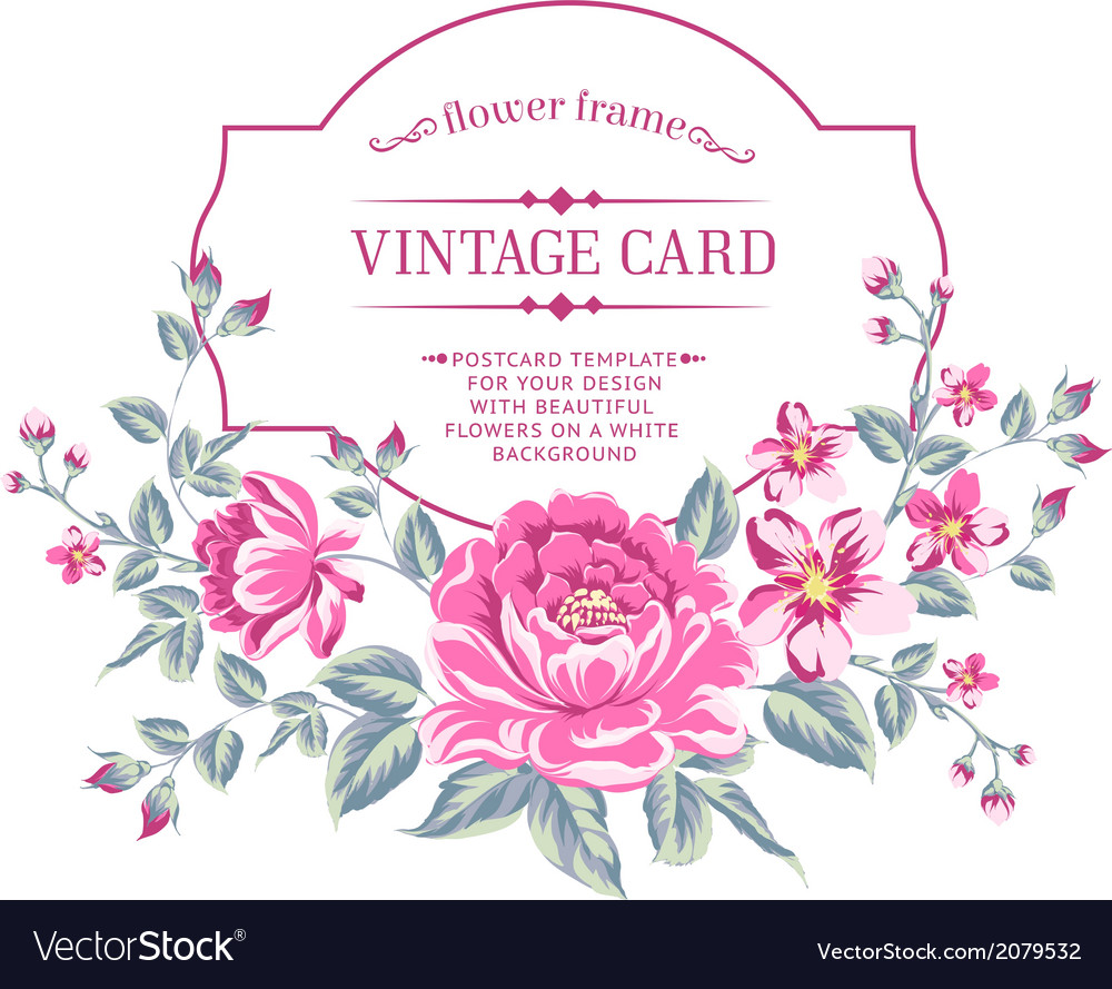 Luxurious color peony background vector