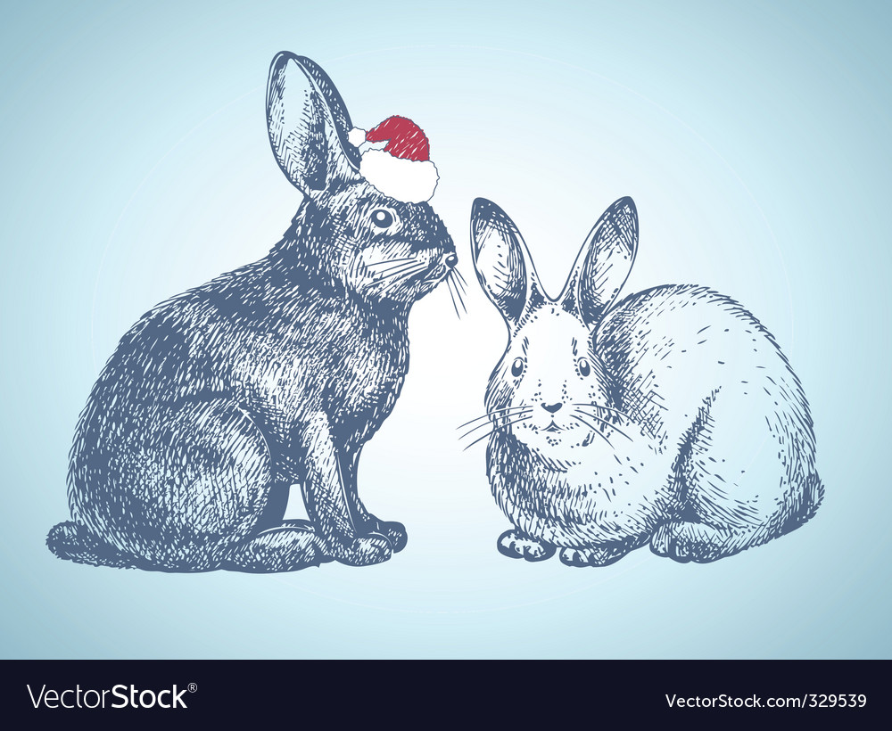 New year bunnies vector