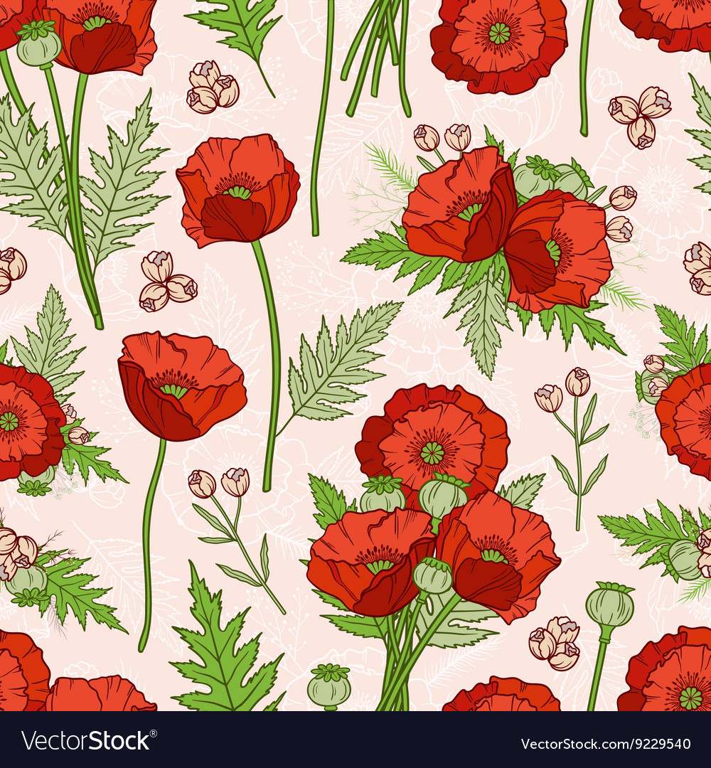 Seamless pattern with poppies bohemian style vector