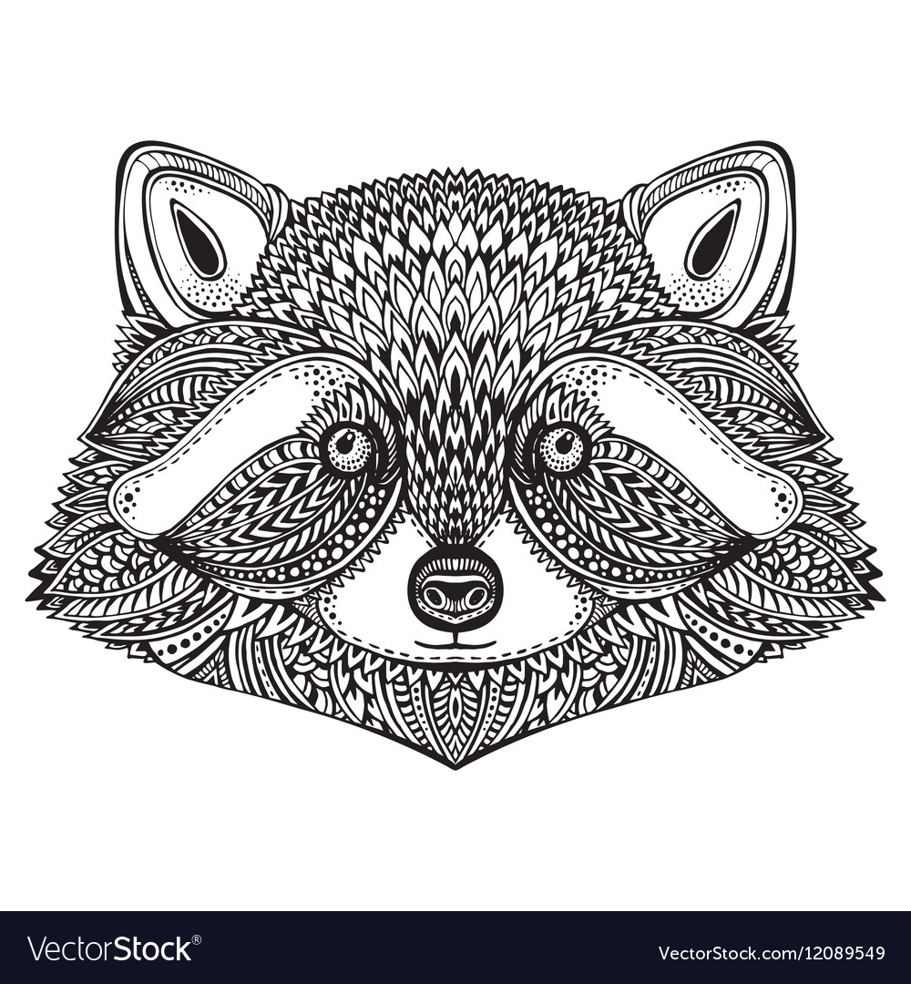 Hand drawn raccoon face in doodle ornate style vector