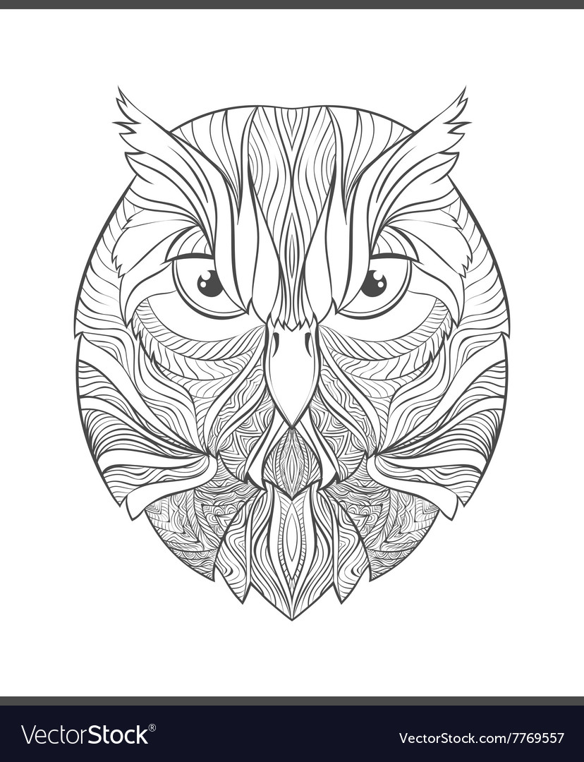 Bright colorful print with the sketch owl adult vector