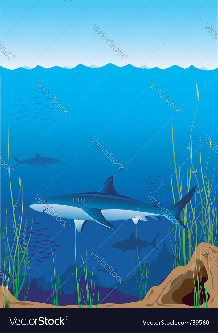 Underwater world with sharks vector