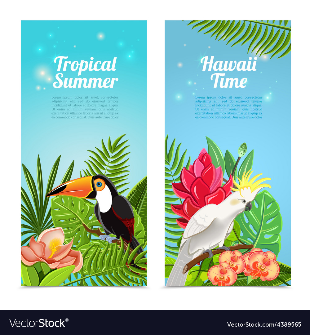 Tropical island birds vertical banners set vector