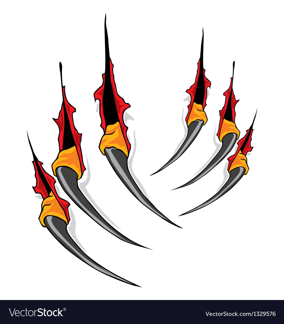 Claws scratches vector