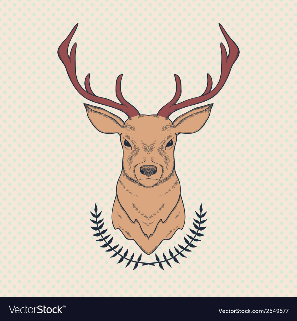 Hand drawn colorful of deer and laurel vector