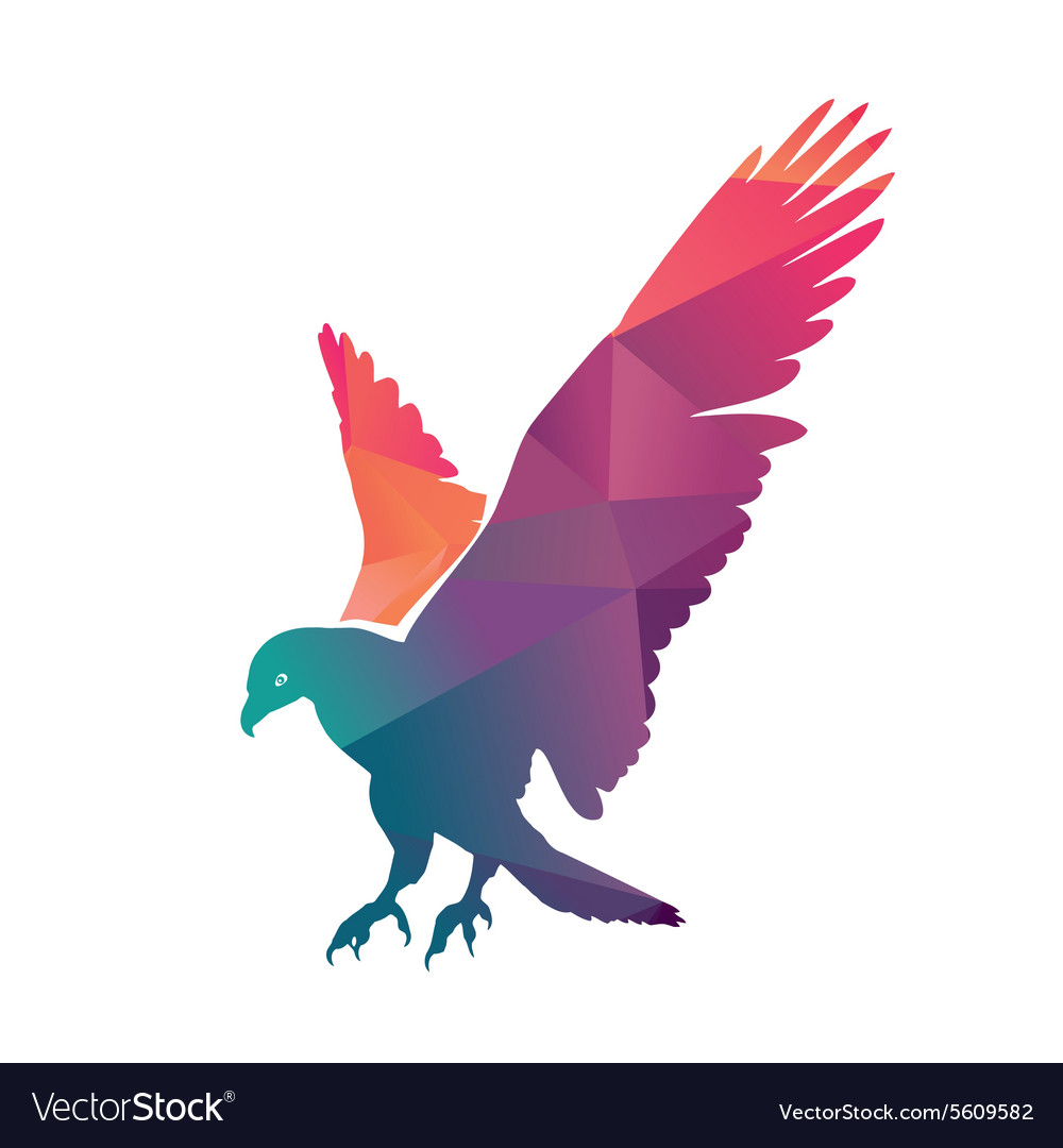 Colorful eagle vector