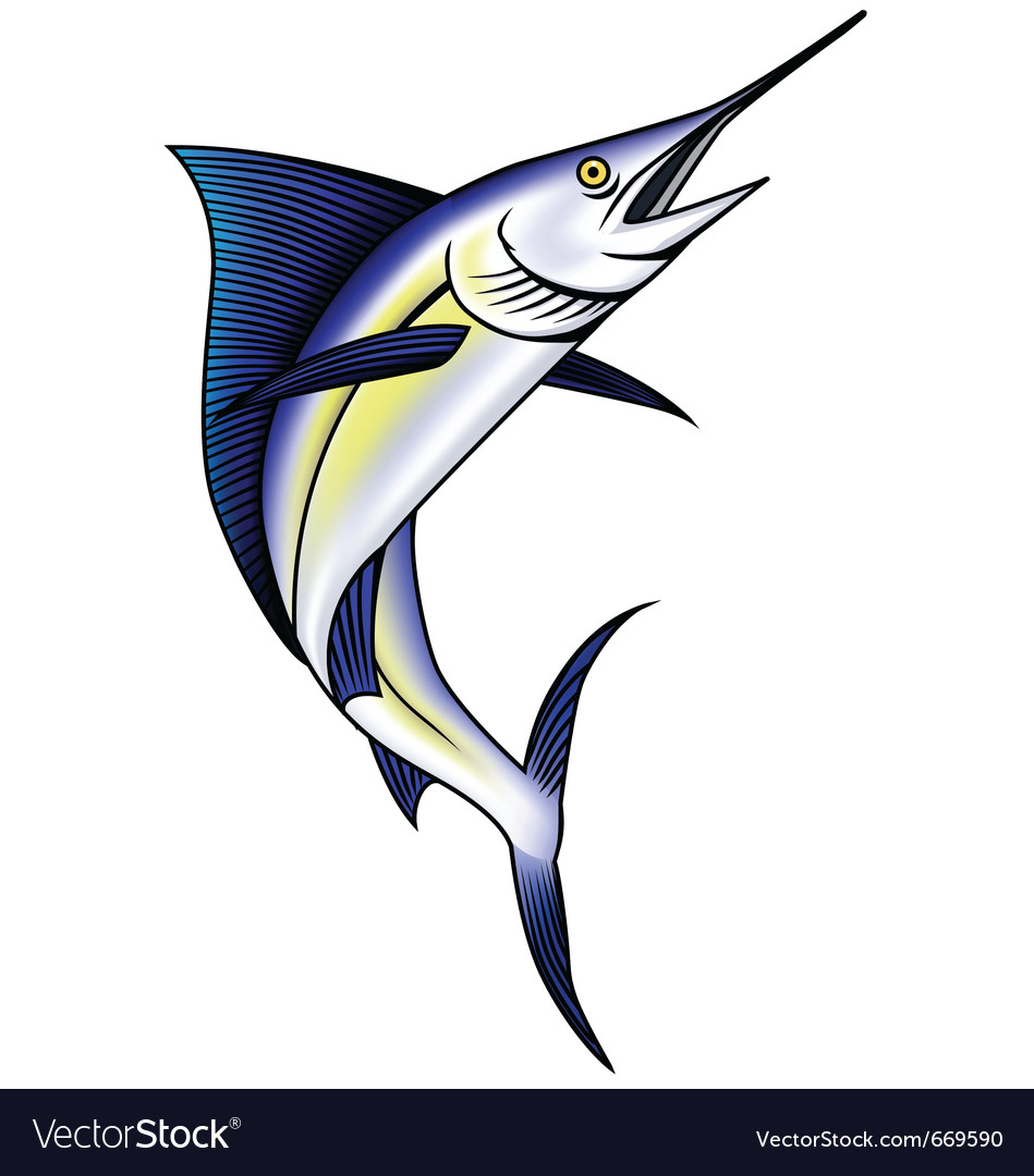Marlin fish vector