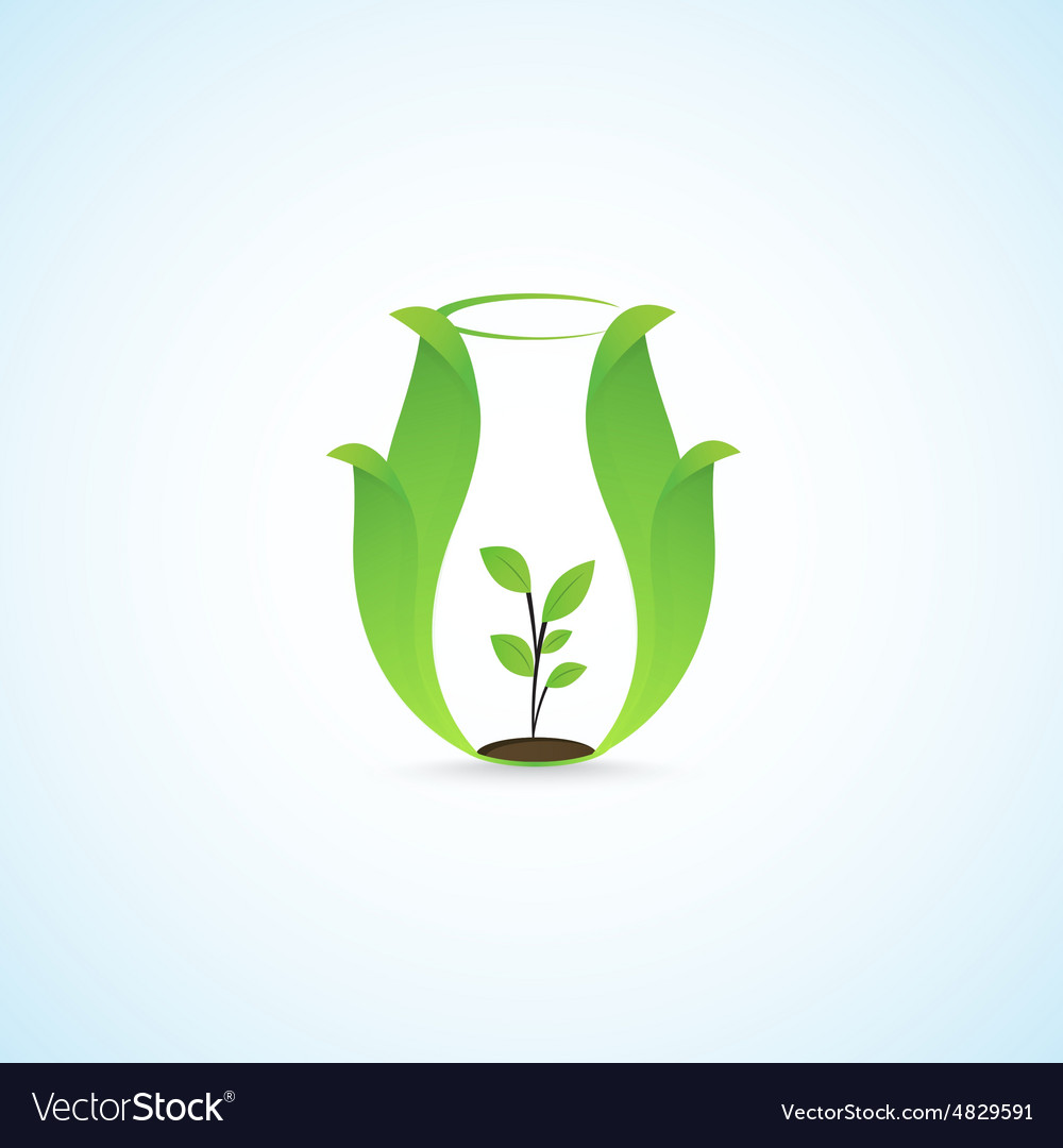 Pitcher and plants vector