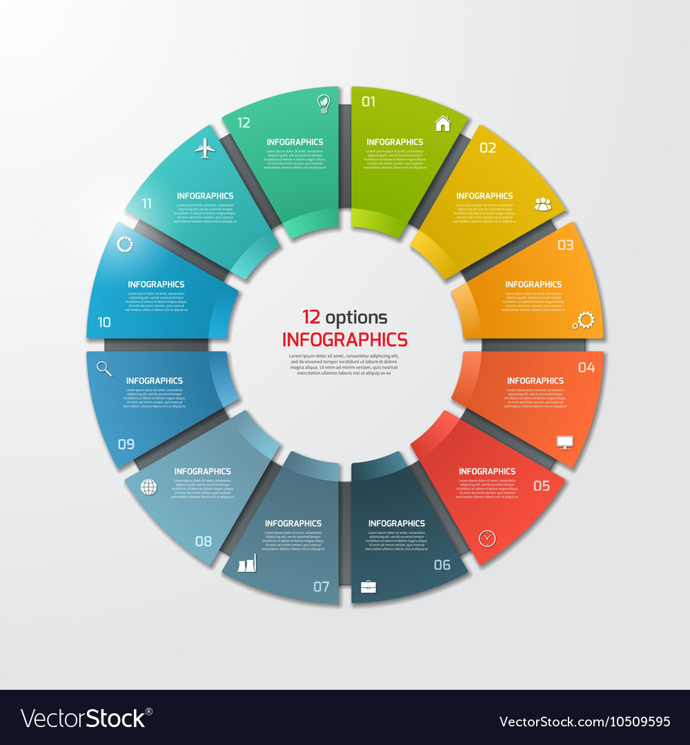 Pie chart infographic template 12 options vector