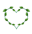 Fresh Green Vine Leaves in A Beautiful Heart Shape vector image