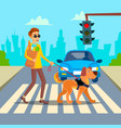 blind man young person with pet dog vector image