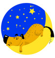 sleeping dog tired pet asleep on the moon vector image
