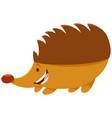 hedgehog cartoon animal character vector image
