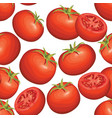 tomato background vegetable seamless pattern food vector image