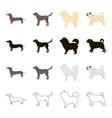dog dachshund chow chow pug breed labrador dog vector image
