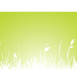 Grass Meadow vector image