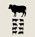 Cows Silhouettes Set vector image