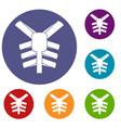 human thorax icons set vector image