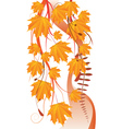 Maple leaves ornament vector image