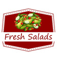 Fresh salads vector image