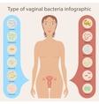 Woman s vaginal flora vector image